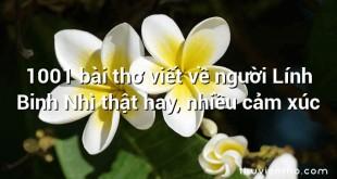 1001 bài thơ viết về người Lính Binh Nhì thật hay, nhiều cảm xúc