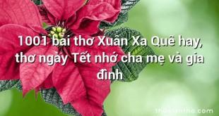 1001 bài thơ Xuân Xa Quê hay, thơ ngày Tết nhớ cha mẹ và gia đình