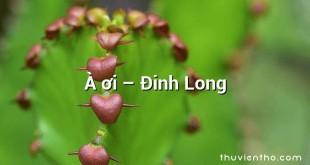 À ơi  –  Đinh Long