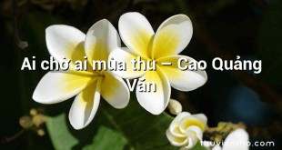 Ai chờ ai mùa thu  –  Cao Quảng Văn