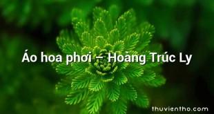 Áo hoa phơi  –  Hoàng Trúc Ly