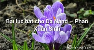 Bài lục bát cho Đà Nẵng  –  Phan Xuân Sinh
