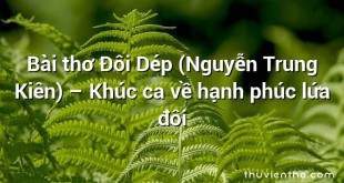 Bài thơ Đôi Dép (Nguyễn Trung Kiên) – Khúc ca về hạnh phúc lứa đôi