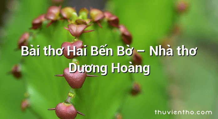 Bài thơ Hai Bến Bờ – Nhà thơ Dương Hoàng