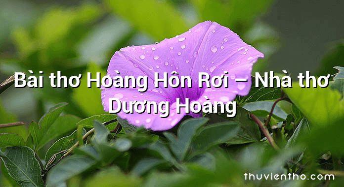 Bài thơ Hoàng Hôn Rơi – Nhà thơ Dương Hoàng