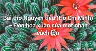 Bài thơ Nguyên tiêu (Hồ Chí Minh) – Đóa hoa xuân của một nhân cách lớn