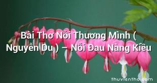 Bài Thơ Nỗi Thương Mình ( Nguyễn Du ) – Nỗi Đau Nàng Kiều