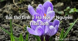 Bài thơ tình ở Hà Nội  –  Nguyễn Thái Sơn