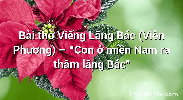 """Bài thơ Viếng Lăng Bác (Viễn Phương) – """"Con ở miền Nam ra thăm lăng Bác"""""""