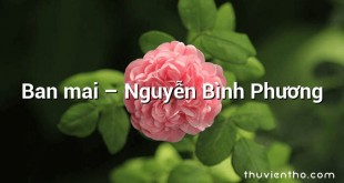 Ban mai  –  Nguyễn Bình Phương