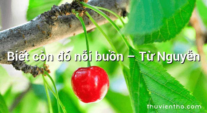 Biết còn đó nỗi buồn – Từ Nguyễn