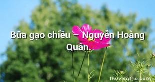 Bữa gạo chiều  –  Nguyễn Hoàng Quân