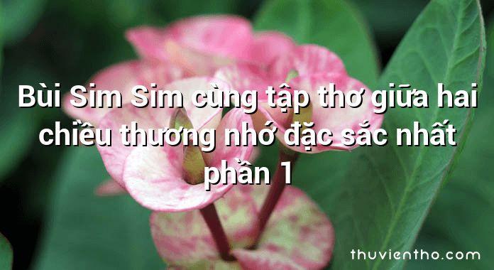 Bùi Sim Sim cùng tập thơ giữa hai chiều thương nhớ đặc sắc nhất phần 1