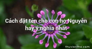 Cách đặt tên cho con họ Nguyễn hay ý nghĩa nhất