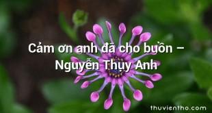 Cảm ơn anh đã cho buồn  –  Nguyễn Thụy Anh