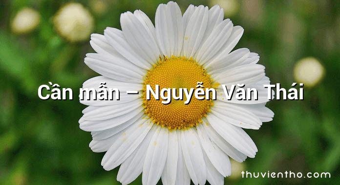 Cần mẫn – Nguyễn Văn Thái