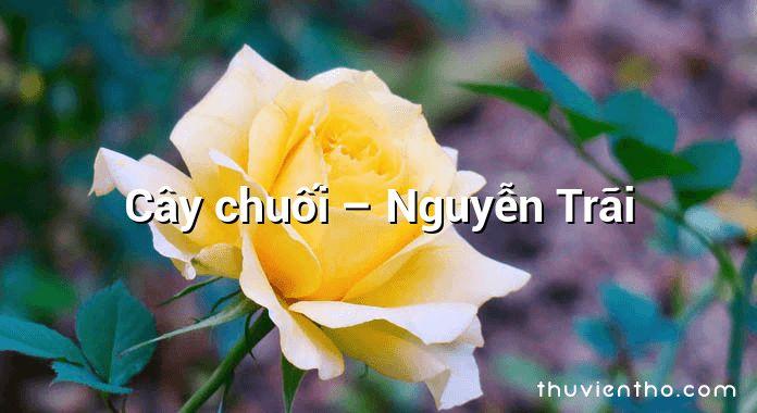 Cây chuối – Nguyễn Trãi