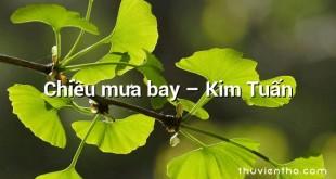 Chiều mưa bay  –  Kim Tuấn