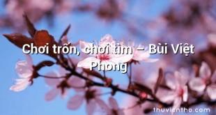 Chơi trốn, chơi tìm  –  Bùi Việt Phong