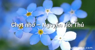 Chợt nhớ  –  Nguyễn Hồi Thủ