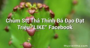 """Chùm Stt Thả Thính Bá Đạo Đạt Triệu """"LIKE"""" Facebook"""