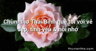 Chùm thơ Thái Bình quê tôi với vẻ đẹp, tình yêu & nỗi nhớ