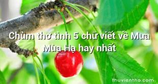 Chùm thơ tình 5 chữ viết về Mưa Mùa Hạ hay nhất