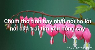 Chùm thơ tình hay nhất nói hộ lời nói của trái tim yêu nồng say