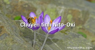 Chuyện tình Nito-Oxi
