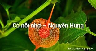 Có nỗi nhớ – Nguyễn Hưng