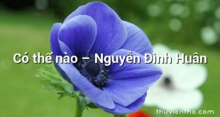 Có thể nào – Nguyễn Đình Huân