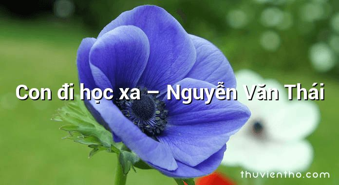 Con đi học xa – Nguyễn Văn Thái