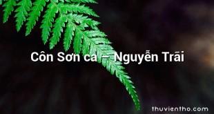 Côn Sơn ca – Nguyễn Trãi