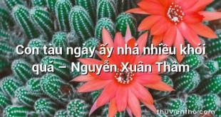 Con tàu ngày ấy nhả nhiều khói quá  –  Nguyễn Xuân Thâm