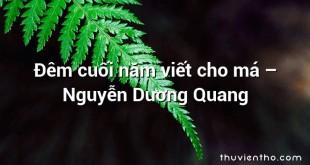 Đêm cuối năm viết cho má  –  Nguyễn Dương Quang