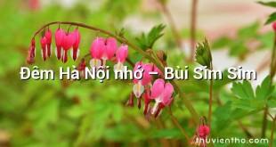 Đêm Hà Nội nhớ  –  Bùi Sim Sim