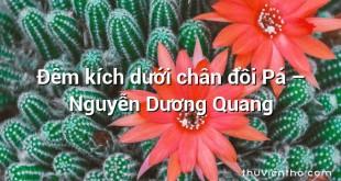 Đêm kích dưới chân đồi Pá  –  Nguyễn Dương Quang