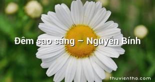 Đêm sao sáng  –  Nguyễn Bính
