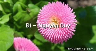 Đi  –  Nguyễn Duy
