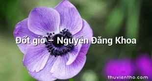 Đốt gió  –  Nguyễn Đăng Khoa