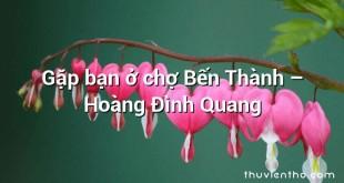 Gặp bạn ở chợ Bến Thành  –  Hoàng Đình Quang