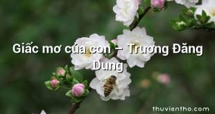 Giấc mơ của con  –  Trương Đăng Dung