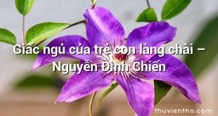 Giấc ngủ của trẻ con làng chài  –  Nguyễn Đình Chiến