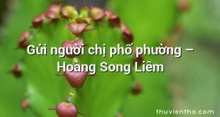 Gửi người chị phố phường  –  Hoàng Song Liêm