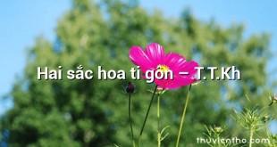 Hai sắc hoa ti gôn – T.T.Kh