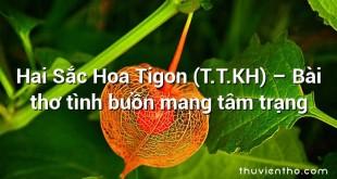 Hai Sắc Hoa Tigon (T.T.KH) – Bài thơ tình buồn mang tâm trạng