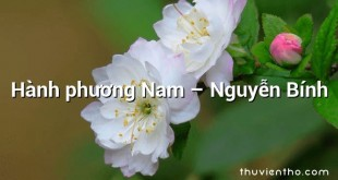 Hành phương Nam  –  Nguyễn Bính
