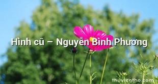 Hình cũ  –  Nguyễn Bình Phương