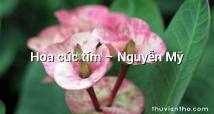 Hoa cúc tím  –  Nguyễn Mỹ