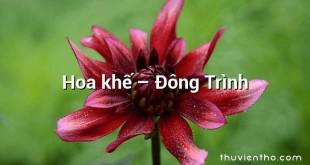 Hoa khế  –  Đông Trình